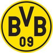 BVB: Gerd Pieper legt sein Amt im Aufsichtsrat nieder