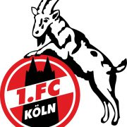 FC verpflichtet Marvin Schwäbe