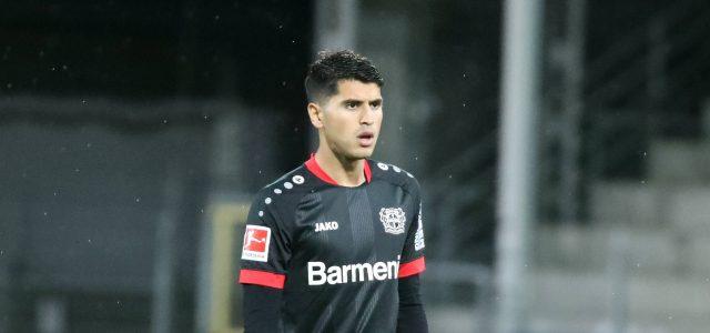 Außenbandriss bei Bayer 04-Profi Palacios